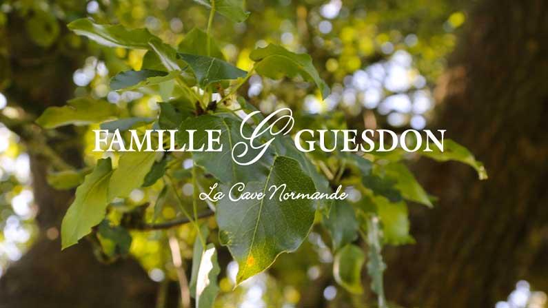 Site Web Famille Guesdon